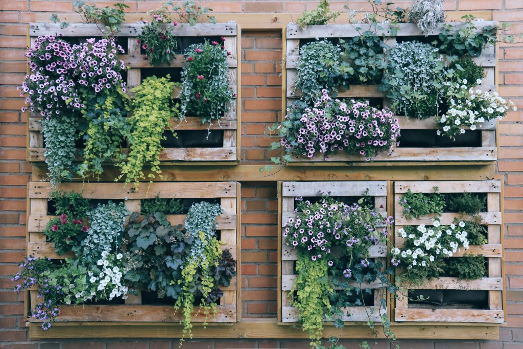 Vertical garden with planting crates on a brick wall