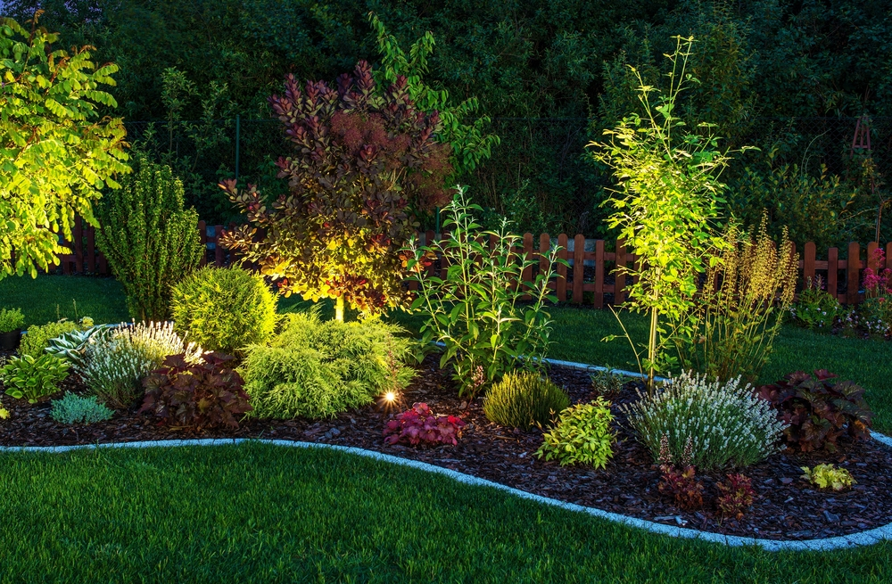 a garden with ambient outdoor lighting